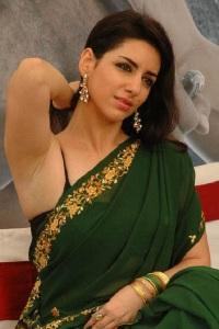 Kriya Hot In Saree
